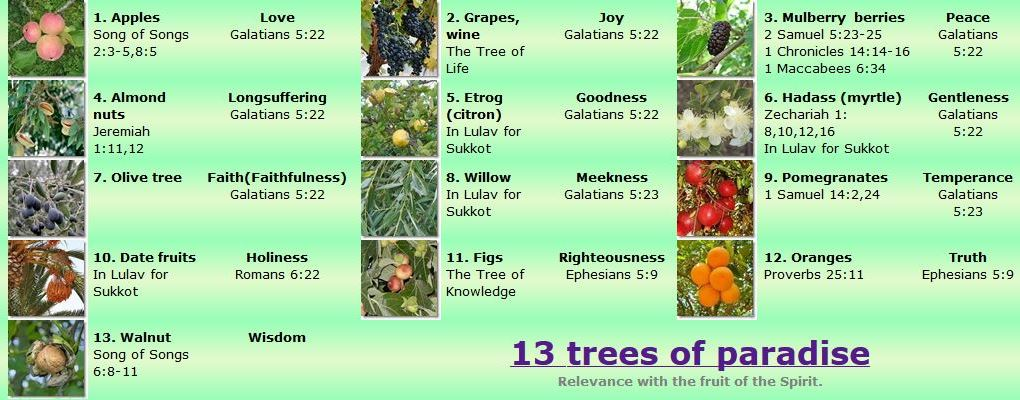 Trees of the Holy Scriptures, 12 trees of Paradise